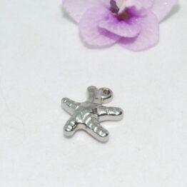 Nemesacél tengeri csillag charm fityegő